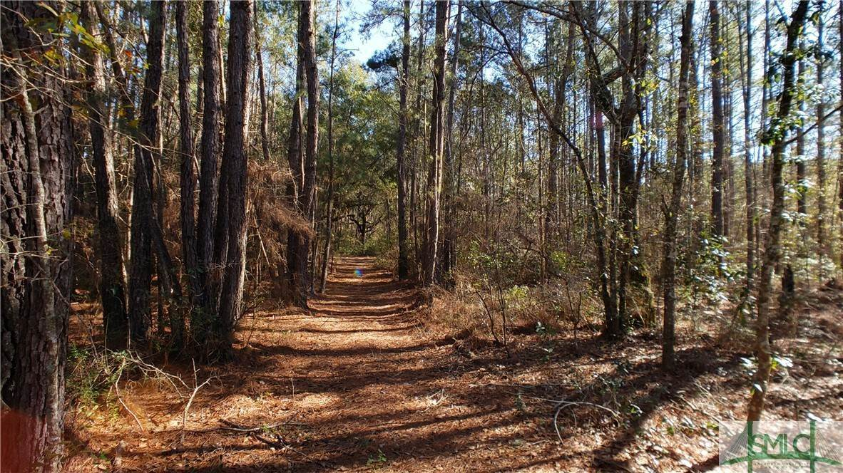 5. Land for Sale at Lot 29, 30, & 31 Lotts Creek Lane Claxton, Georgia 30417 United States
