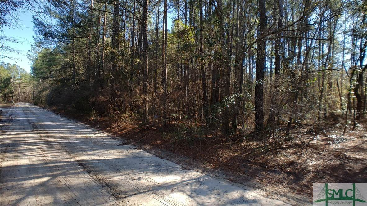 6. Land for Sale at Lot 29, 30, & 31 Lotts Creek Lane Claxton, Georgia 30417 United States