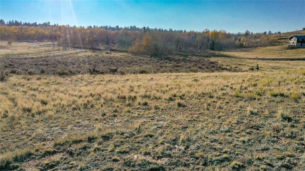 4. Land for Sale at 492 Pronghorn Drive Como, Colorado 80432 United States