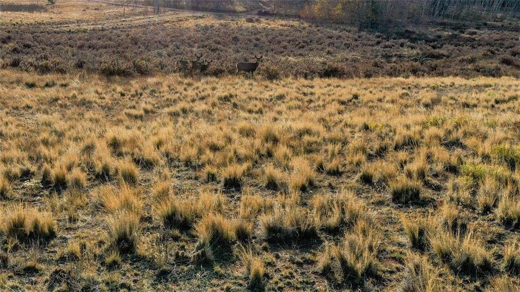 6. Land for Sale at 492 Pronghorn Drive Como, Colorado 80432 United States