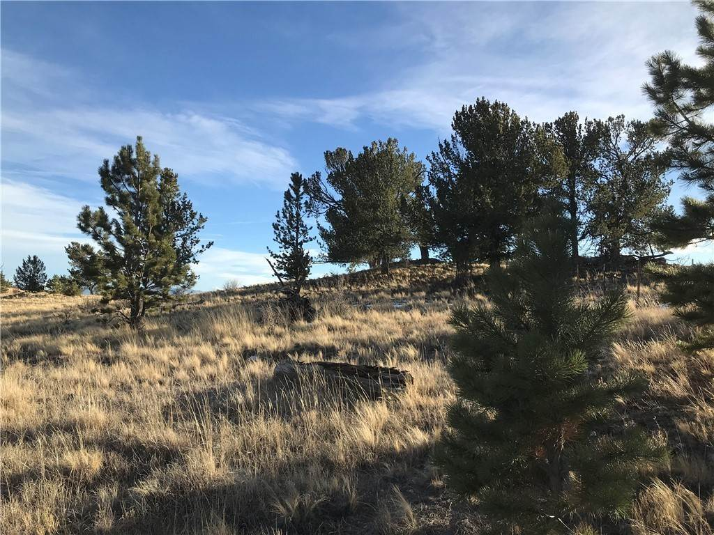 Land for Sale at 1658 Navajo Trail Hartsel, Colorado 80449 United States