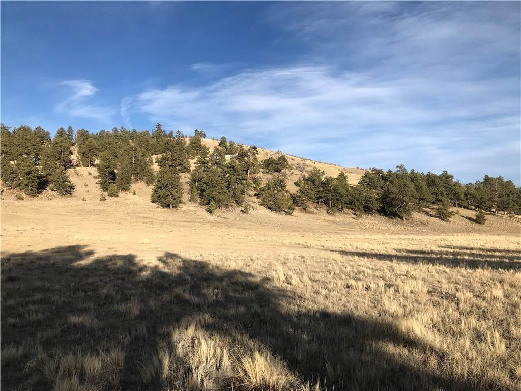 3. Land for Sale at 1658 Navajo Trail Hartsel, Colorado 80449 United States