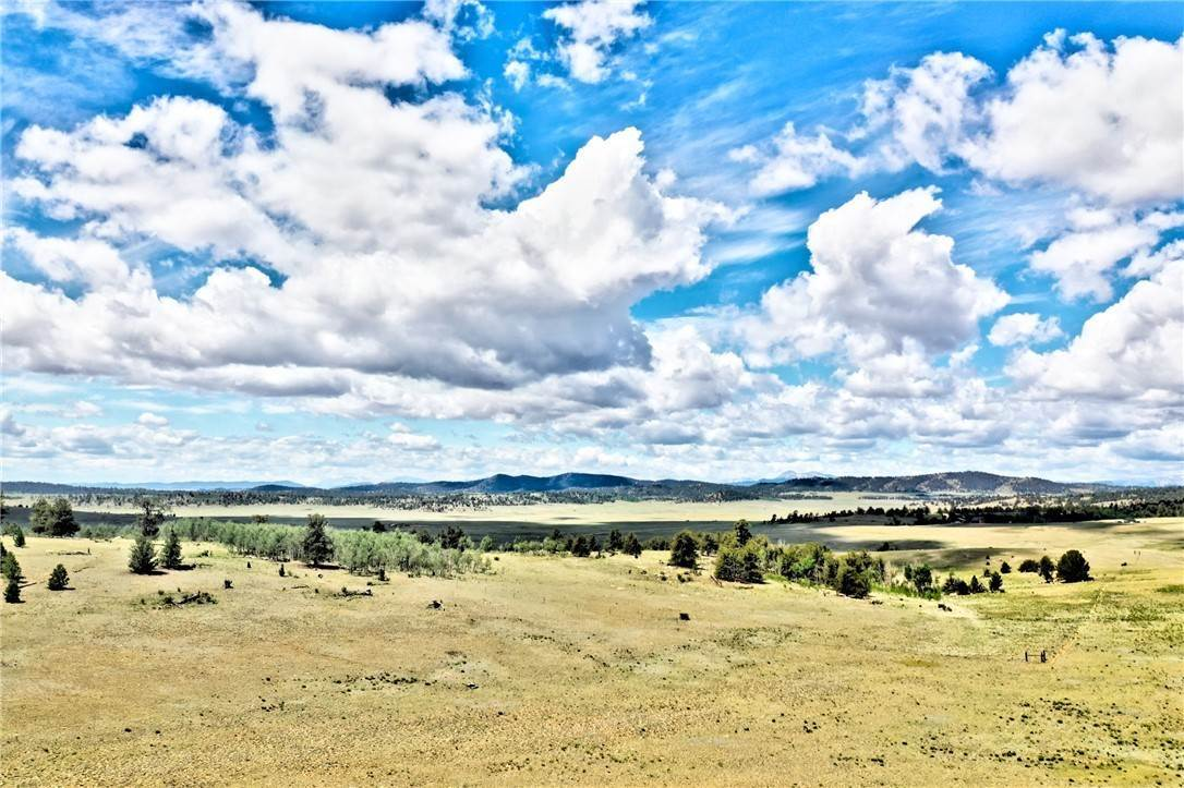 Land for Sale at 262 Grand Teton Drive Hartsel, Colorado 80449 United States