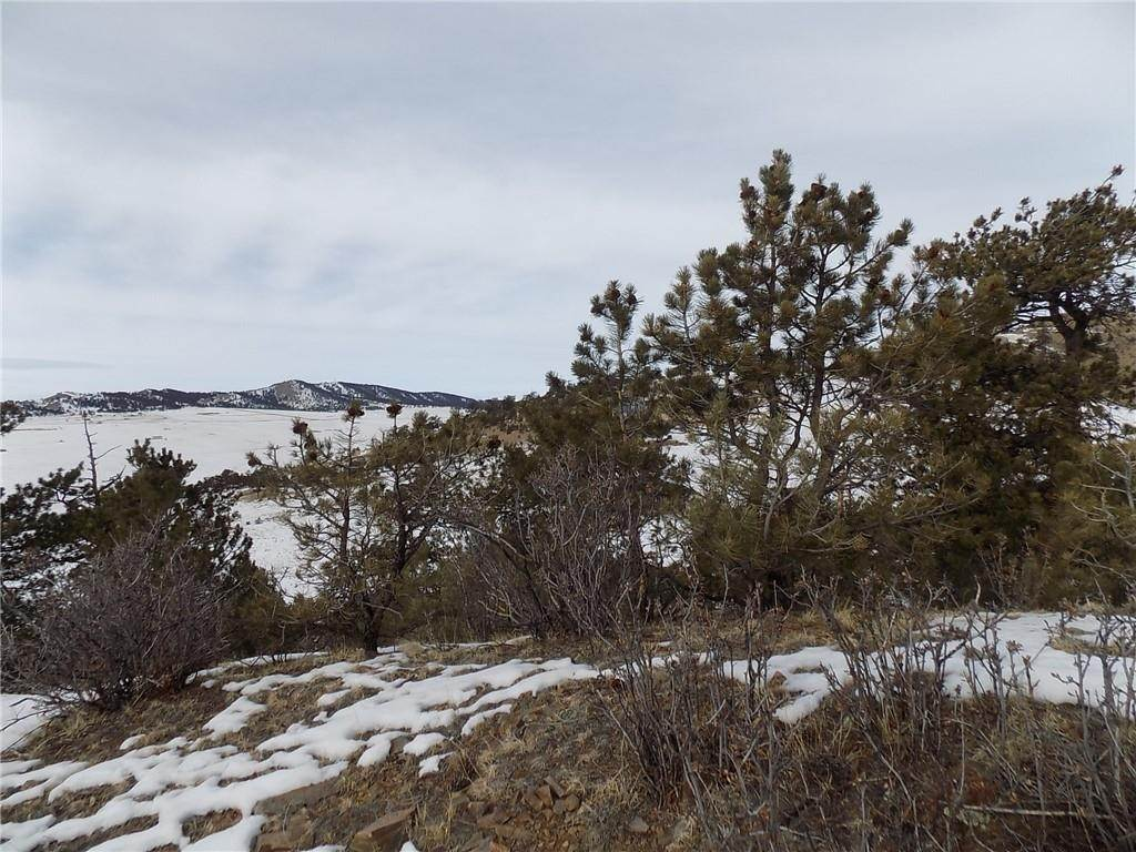 10. Land for Sale at 627 Larimer Drive Hartsel, Colorado 80449 United States