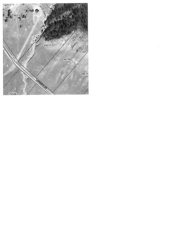 14. Land for Sale at 627 Larimer Drive Hartsel, Colorado 80449 United States