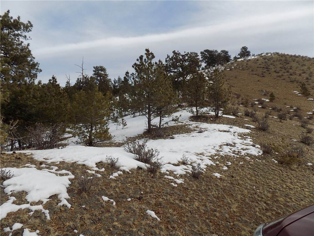 8. Land for Sale at 627 Larimer Drive Hartsel, Colorado 80449 United States