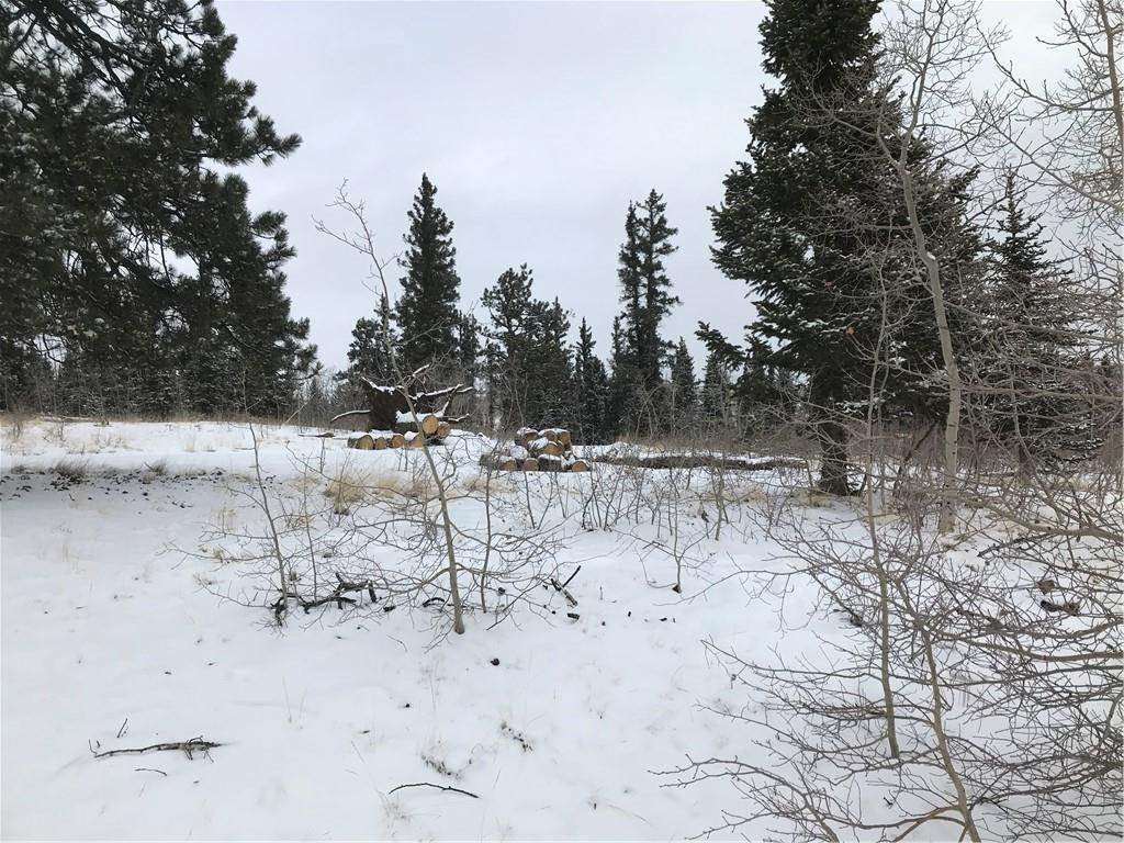 2. Land for Sale at 2069 Warrior Circle Como, Colorado 80432 United States