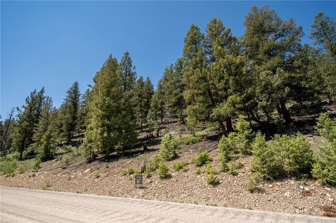 Land for Sale at Tbd Redhill Rd Middle Fork Vista Fairplay, Colorado 80440 United States