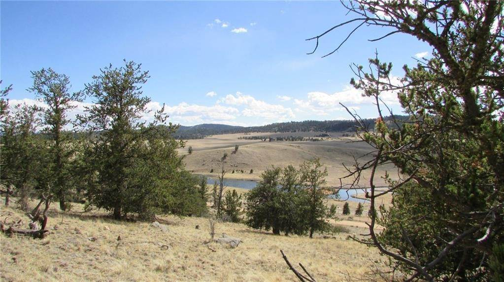 Land for Sale at 32 Yellowstone Road Hartsel, Colorado 80449 United States
