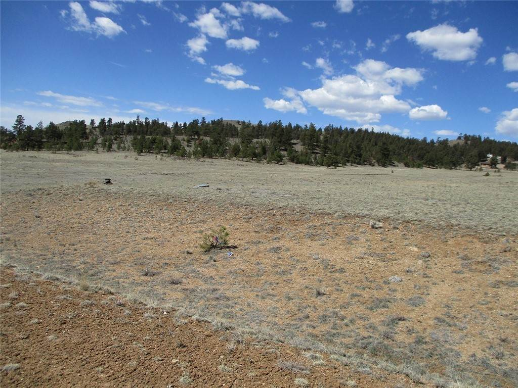 Land for Sale at 127 Sedgewich Drive Hartsel, Colorado 80449 United States