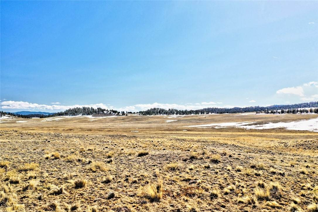 2. Land for Sale at 166 Navajo Trail Hartsel, Colorado 80449 United States