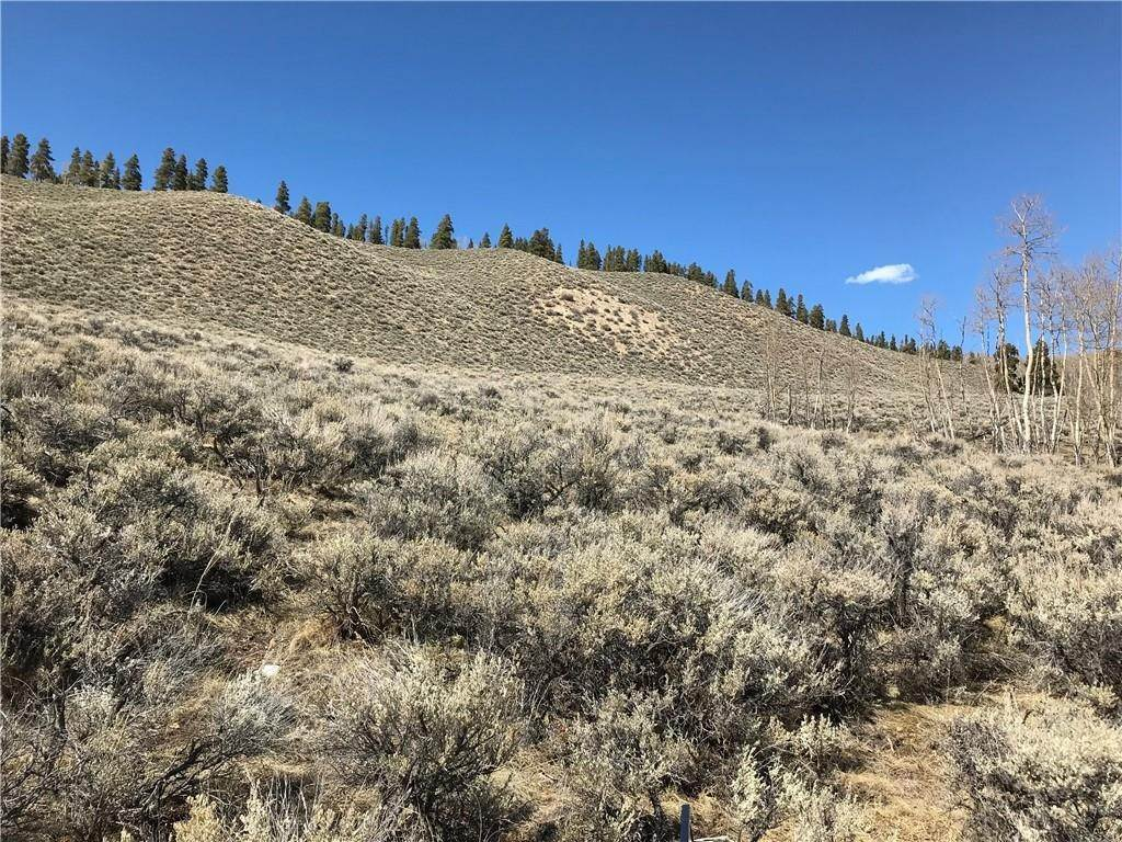 Land for Sale at 391 Mallard Road Leadville, Colorado 80461 United States
