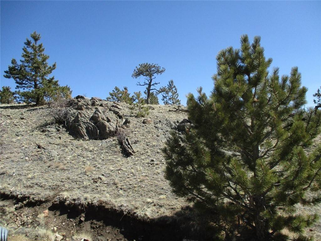 Land for Sale at 2042 Goldenburg Canyon Road Hartsel, Colorado 80449 United States