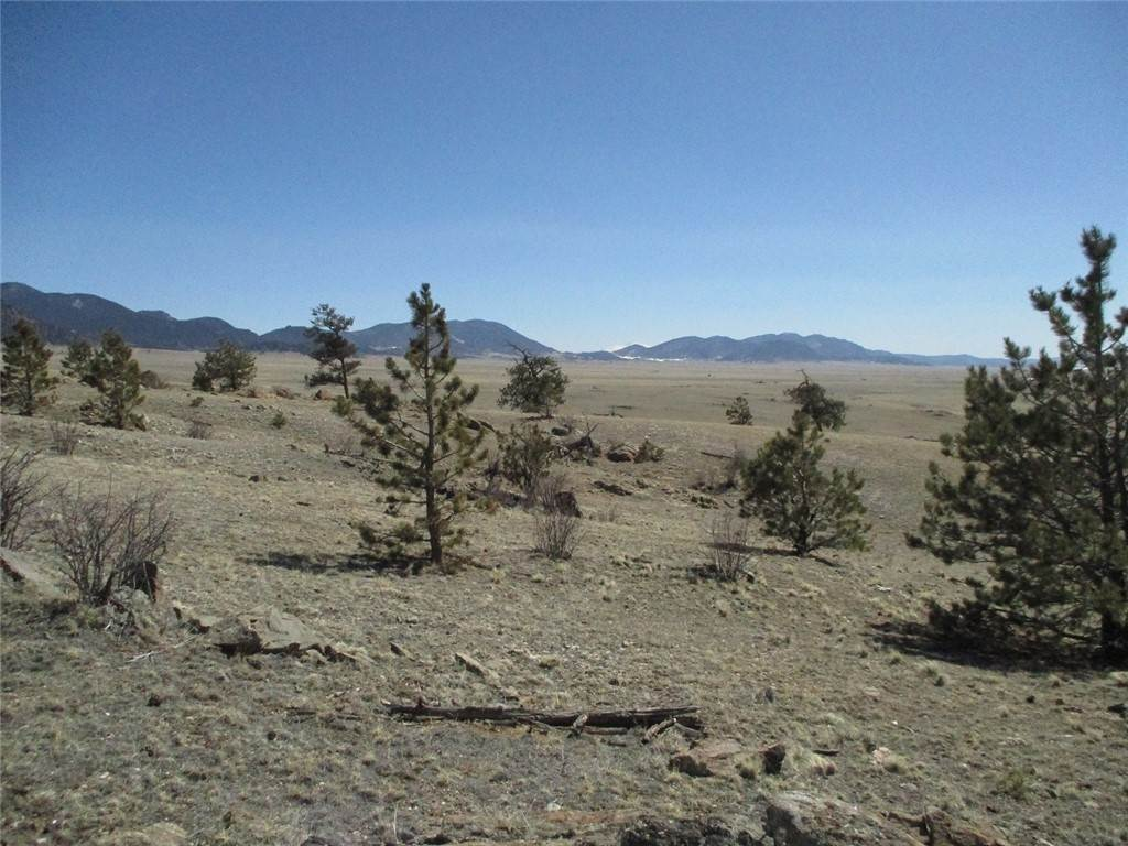 4. Land for Sale at 2042 Goldenburg Canyon Road Hartsel, Colorado 80449 United States