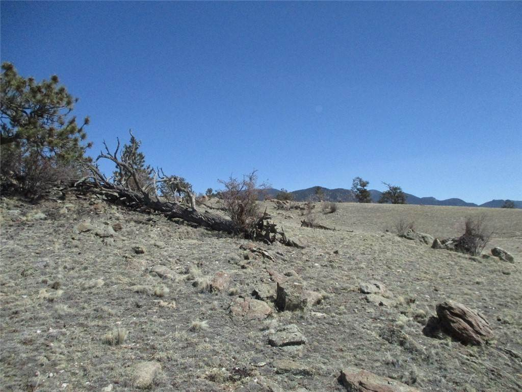 6. Land for Sale at 2042 Goldenburg Canyon Road Hartsel, Colorado 80449 United States
