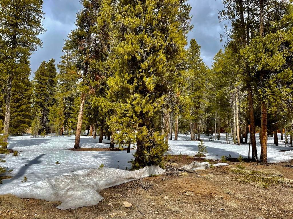 Land for Sale at 428 Augusta Drive Leadville, Colorado 80461 United States