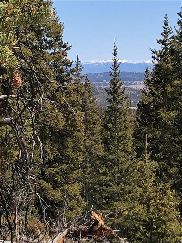 2. Land for Sale at Dry Gulch Fairplay, Colorado 80440 United States
