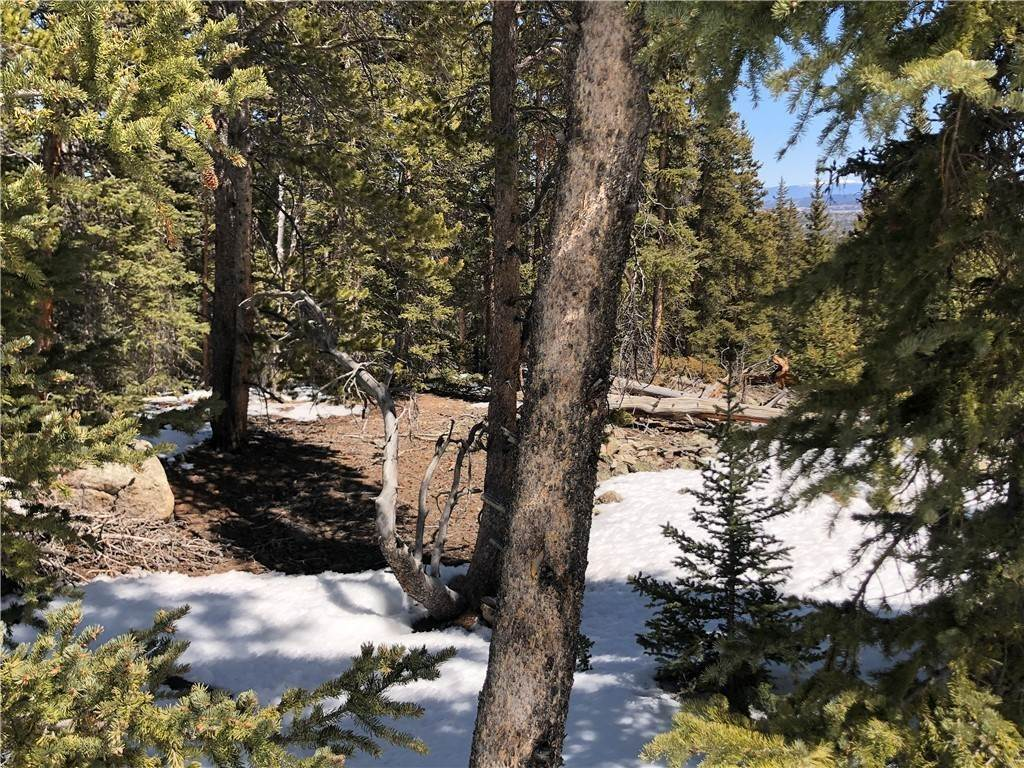 3. Land for Sale at Dry Gulch Fairplay, Colorado 80440 United States