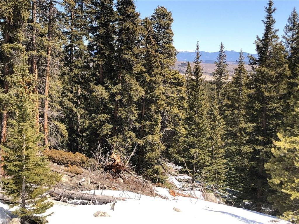 5. Land for Sale at Dry Gulch Fairplay, Colorado 80440 United States