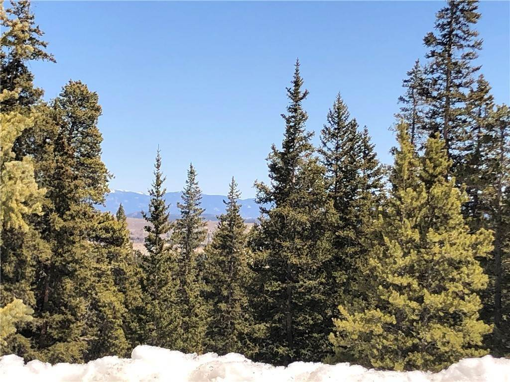 6. Land for Sale at Dry Gulch Fairplay, Colorado 80440 United States