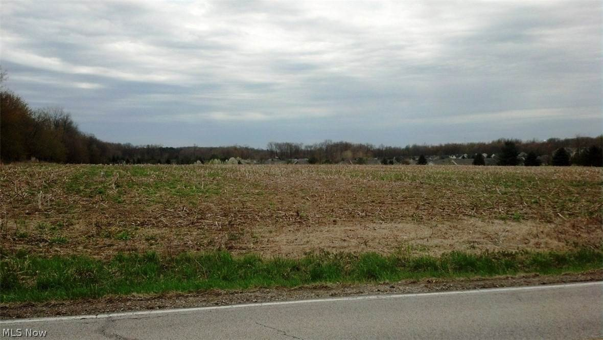 Land for Sale at Reimer Road Wadsworth, Ohio 44281 United States