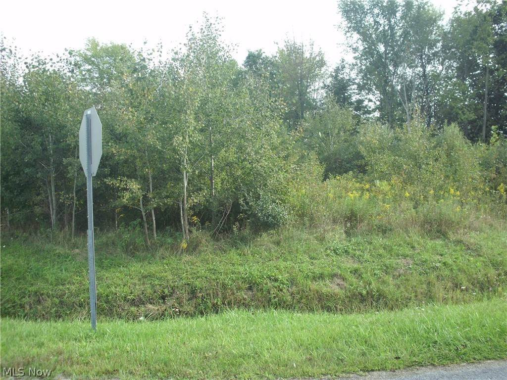 Land at 673 Rome Rock Creek Road Roaming Rock Shores, Ohio 44084 United States