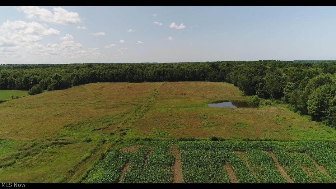 Land for Sale at Hilldom Road Kingsville, Ohio 44048 United States