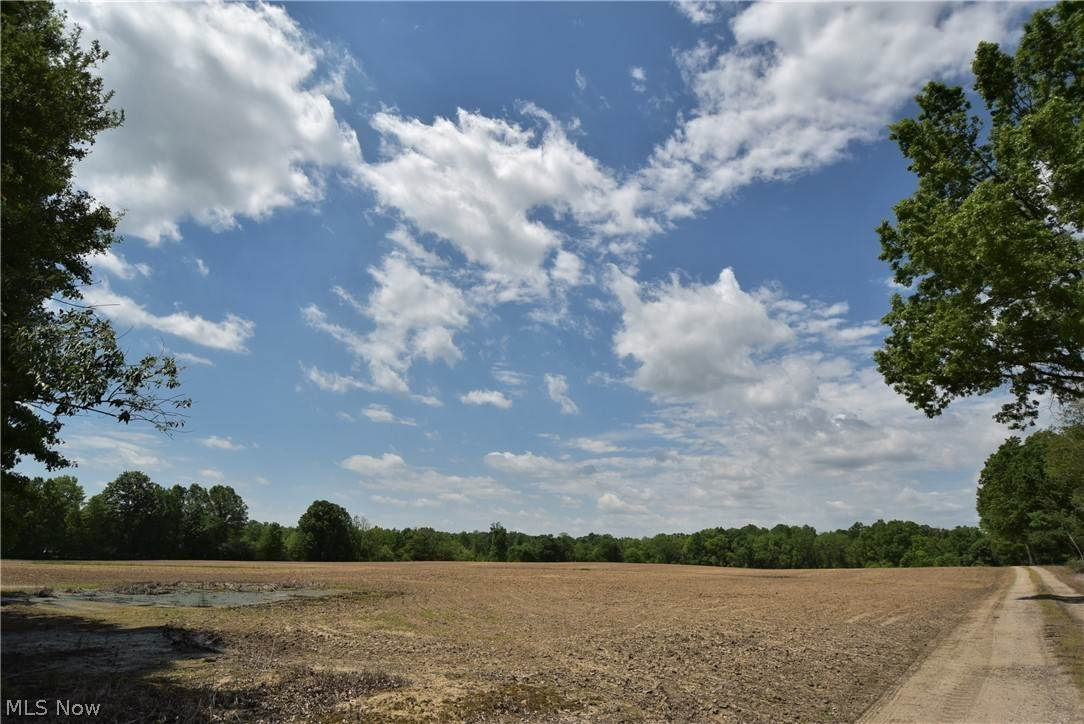 Land for Sale at 1760 N Newton Falls Road 1760 N Newton Falls Road North Jackson, Ohio 44451 United States