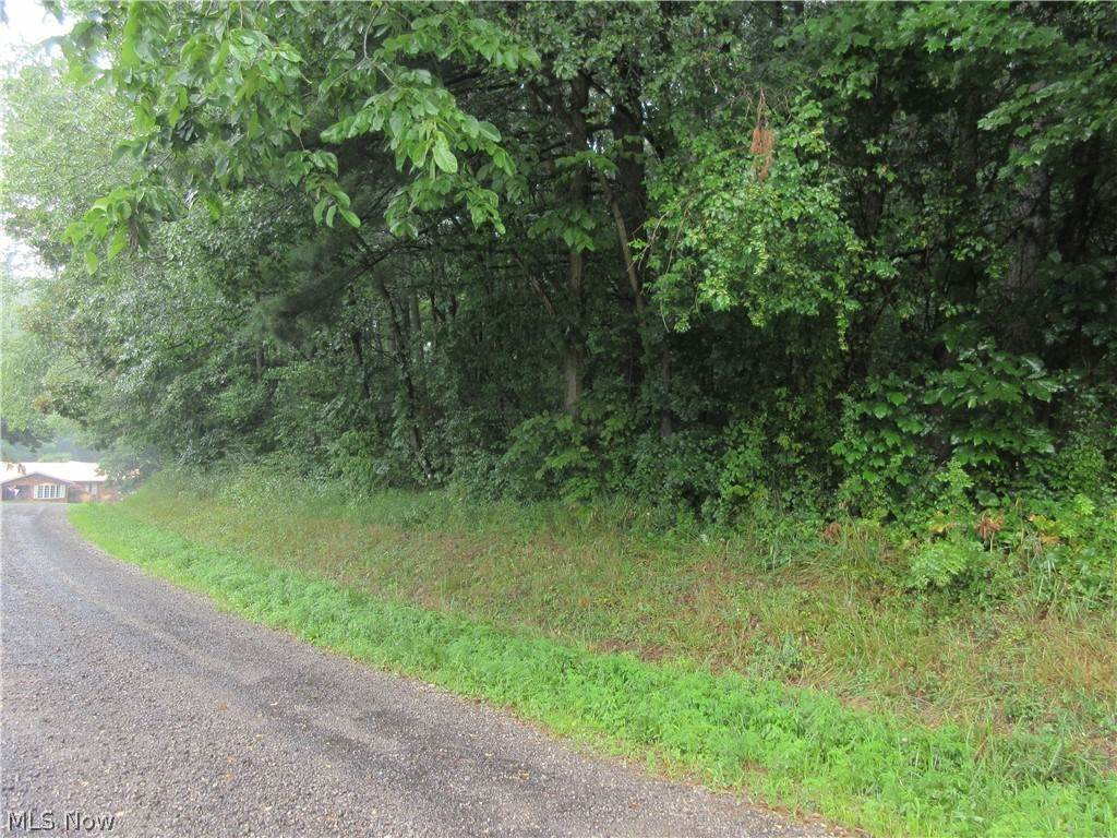 Land for Sale at County Rd 59 Tr 184 Jewett, Ohio 43986 United States