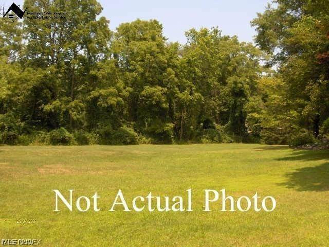 Land for Sale at 3761 Selnik Road Brimfield Township, Ohio 44240 United States