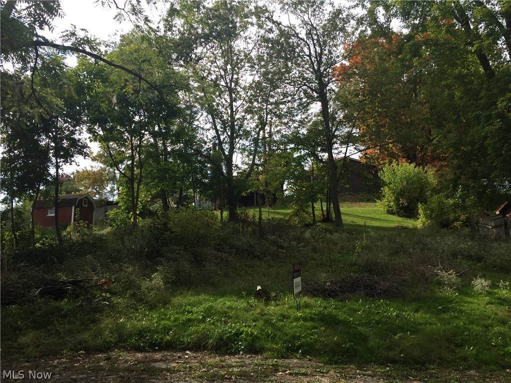 Land for Sale at 32413 Orchard Knoll Drive Hanoverton, Ohio 44423 United States