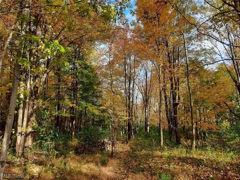 Land for Sale at Cedar Road Chesterland, Ohio 44026 United States