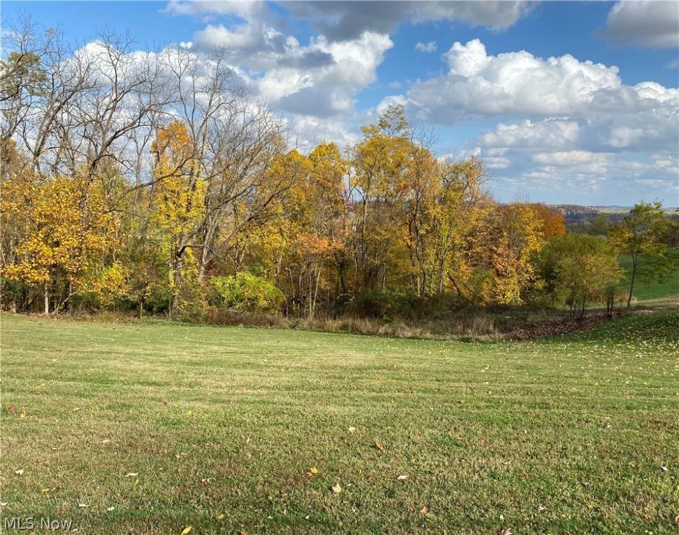 Land for Sale at Twp Road 659 Loudonville, Ohio 44842 United States