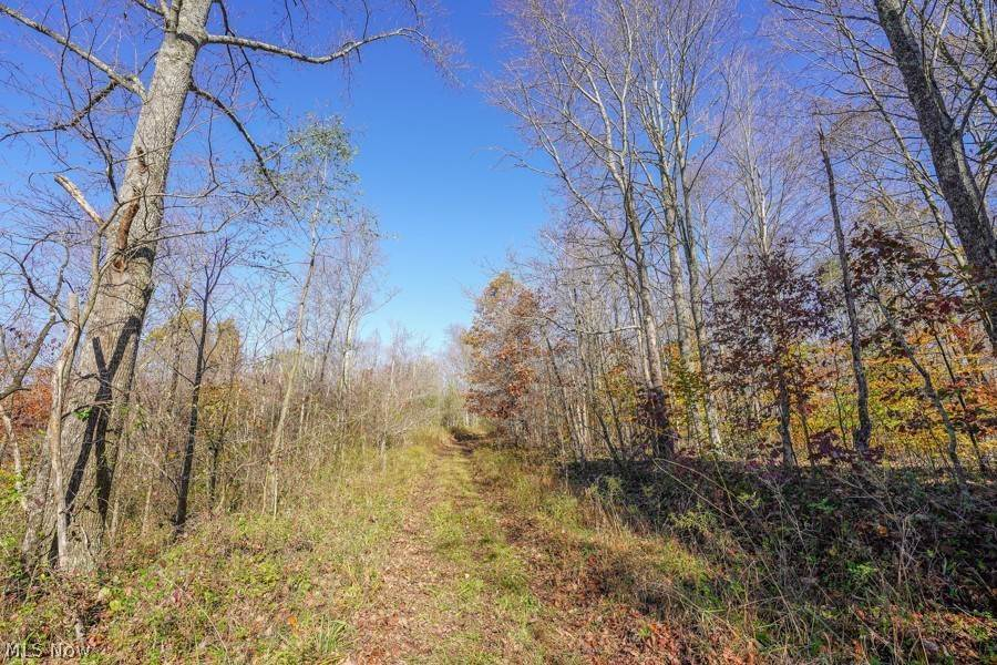 Land for Sale at Millfield Millfield, Ohio 45761 United States