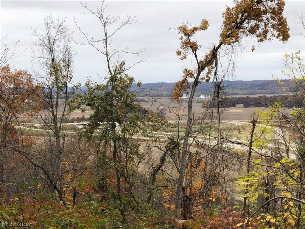Land for Sale at Marne Frazeysburg, Ohio 43822 United States