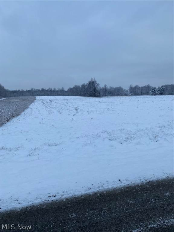 Land for Sale at 0 Miller Road 0 Miller Road Lowellville, Ohio 44436 United States