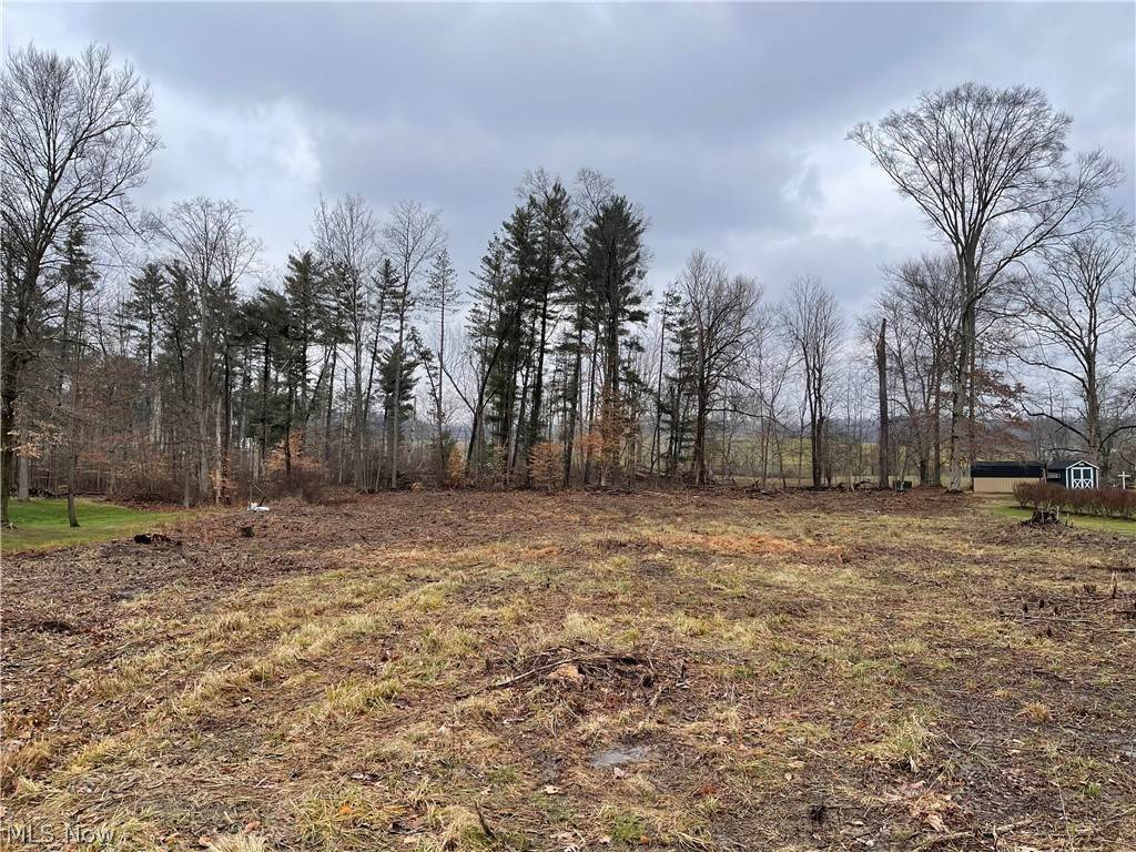 Land for Sale at 2640 Red Fox Drive 2640 Red Fox Drive Duncan Falls, Ohio 43734 United States