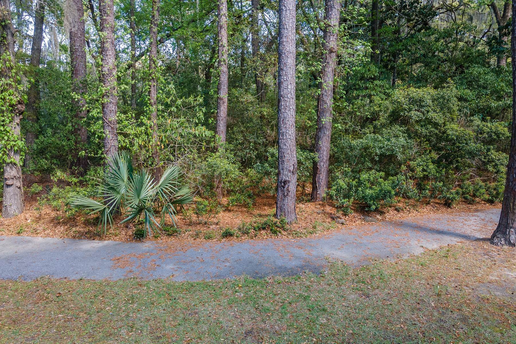 Land for Sale at 173 Bull Point Drive Seabrook, South Carolina 29940 United States
