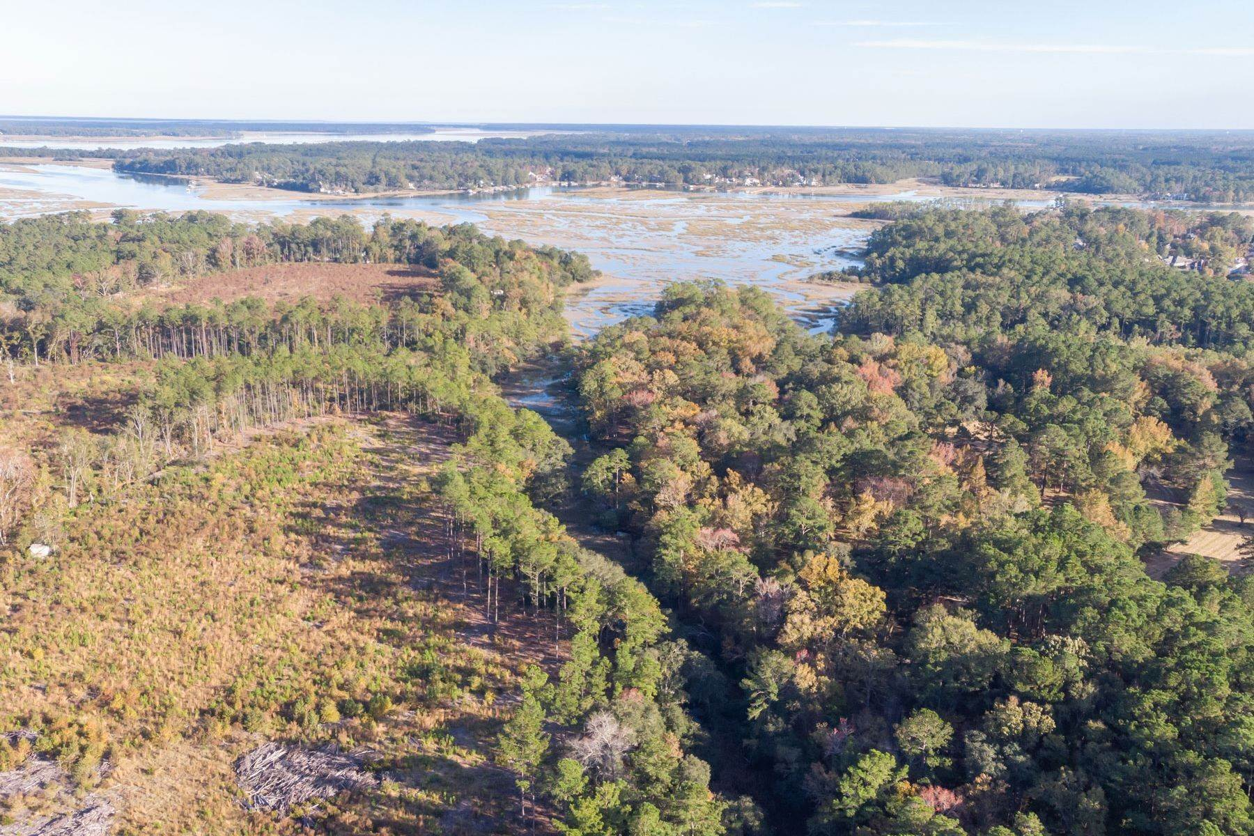 10. Land for Sale at 1691 Okatie Highway Okatie, South Carolina 29909 United States