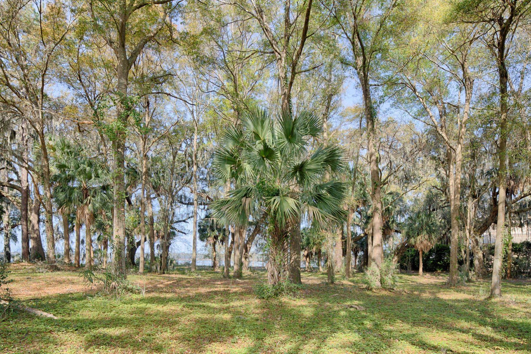 6. Land for Sale at 85 Oak Tree Road Bluffton, South Carolina 29910 United States