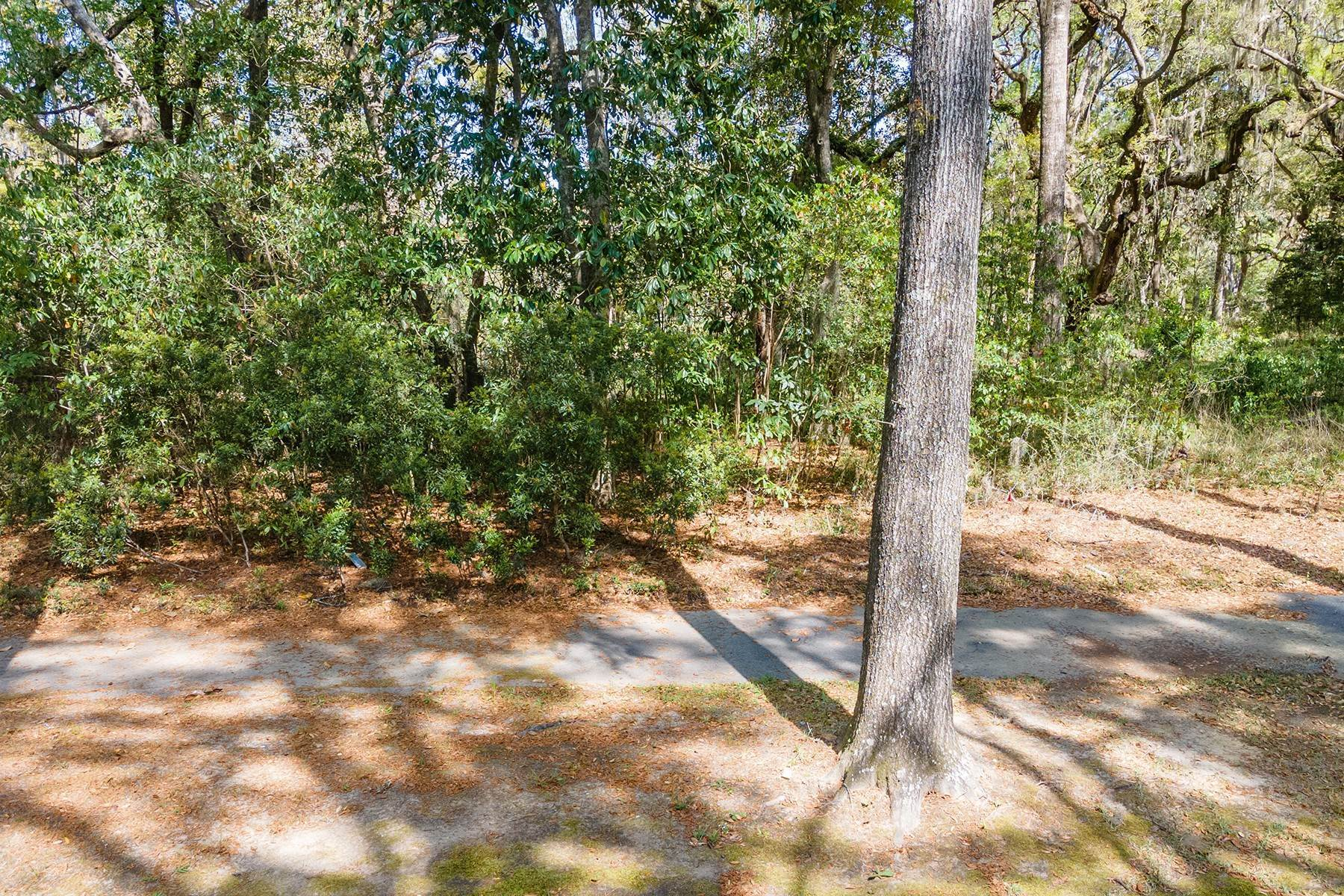 5. Land for Sale at 173 Bull Point Drive Seabrook, South Carolina 29940 United States