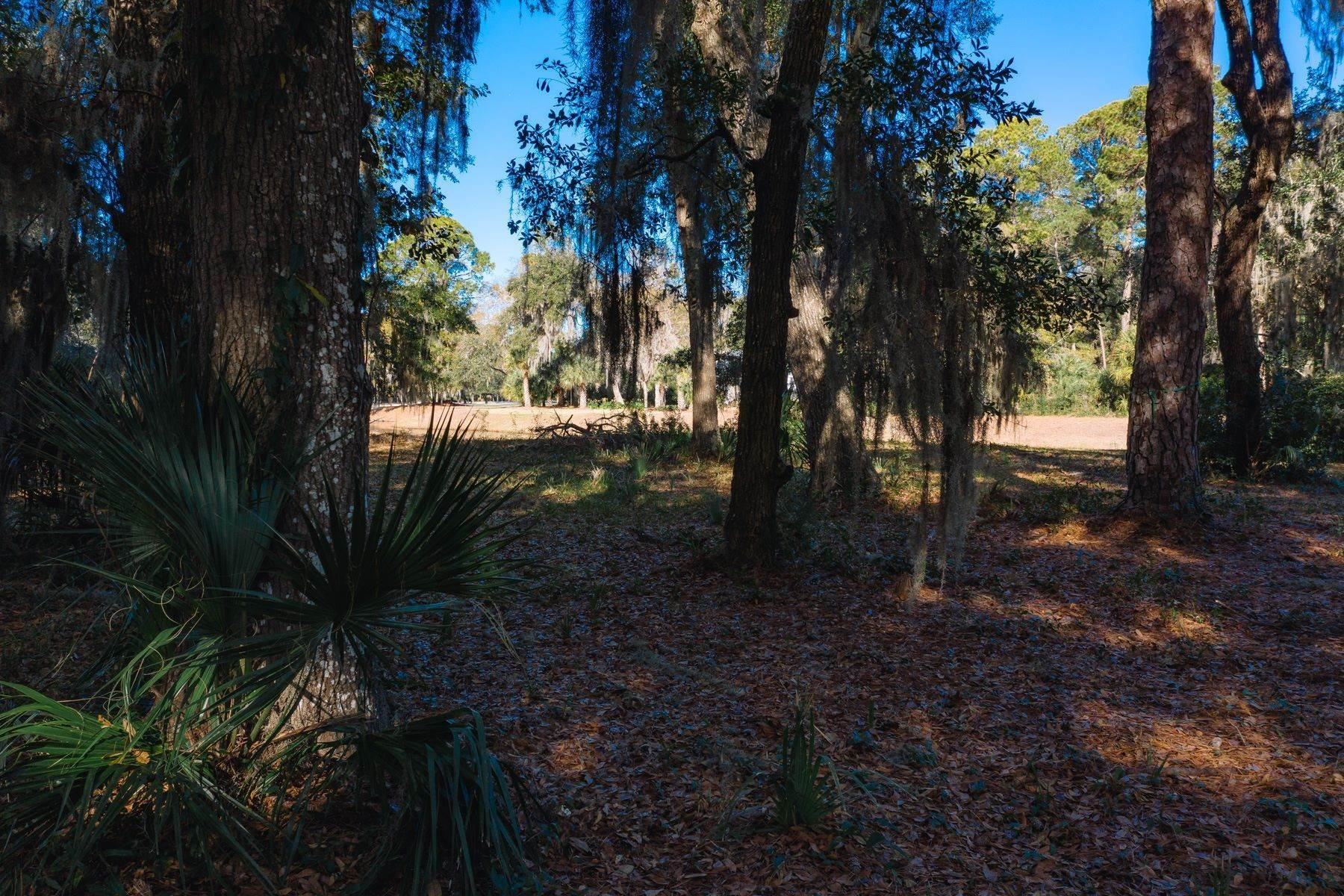 15. Land for Sale at Lagoon View 15 Hampton Lane Bluffton, South Carolina 29910 United States