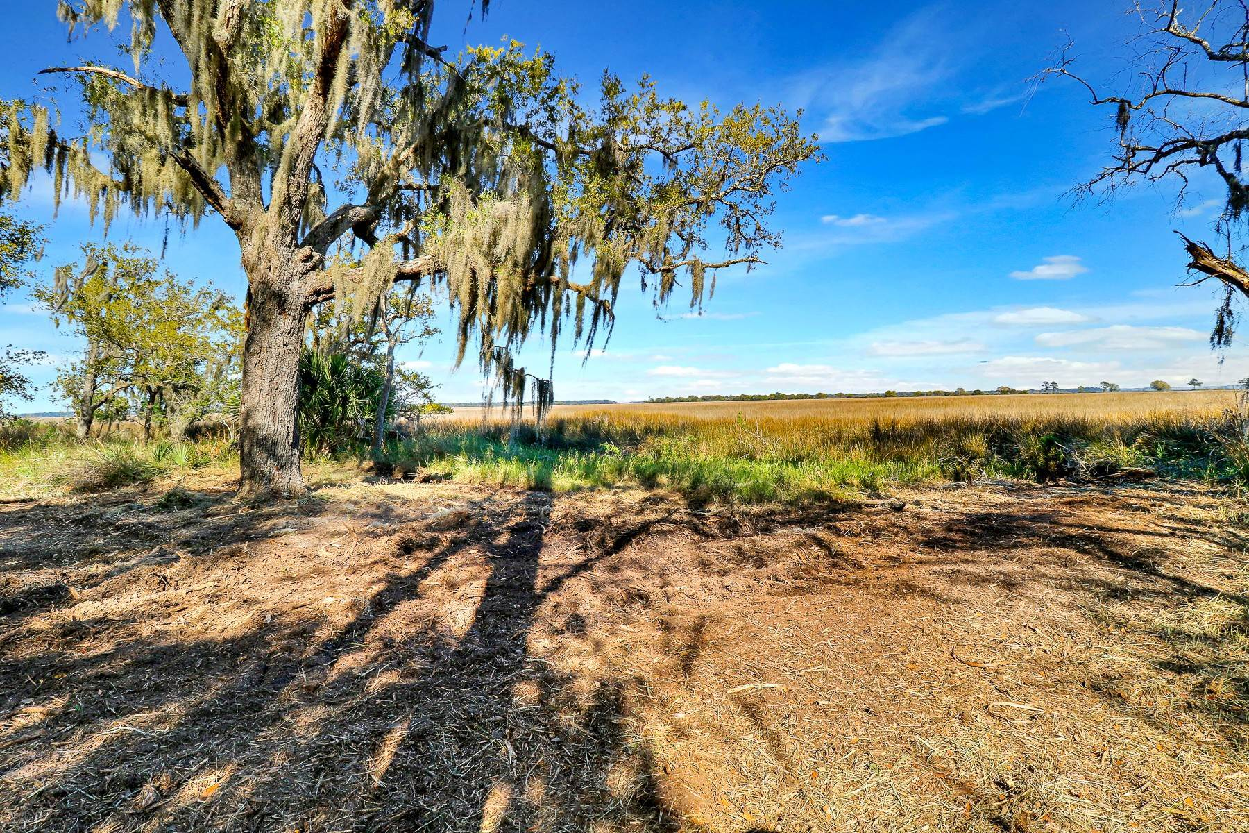 Land for Sale at Knowles Island Road Ridgeland, South Carolina 29936 United States
