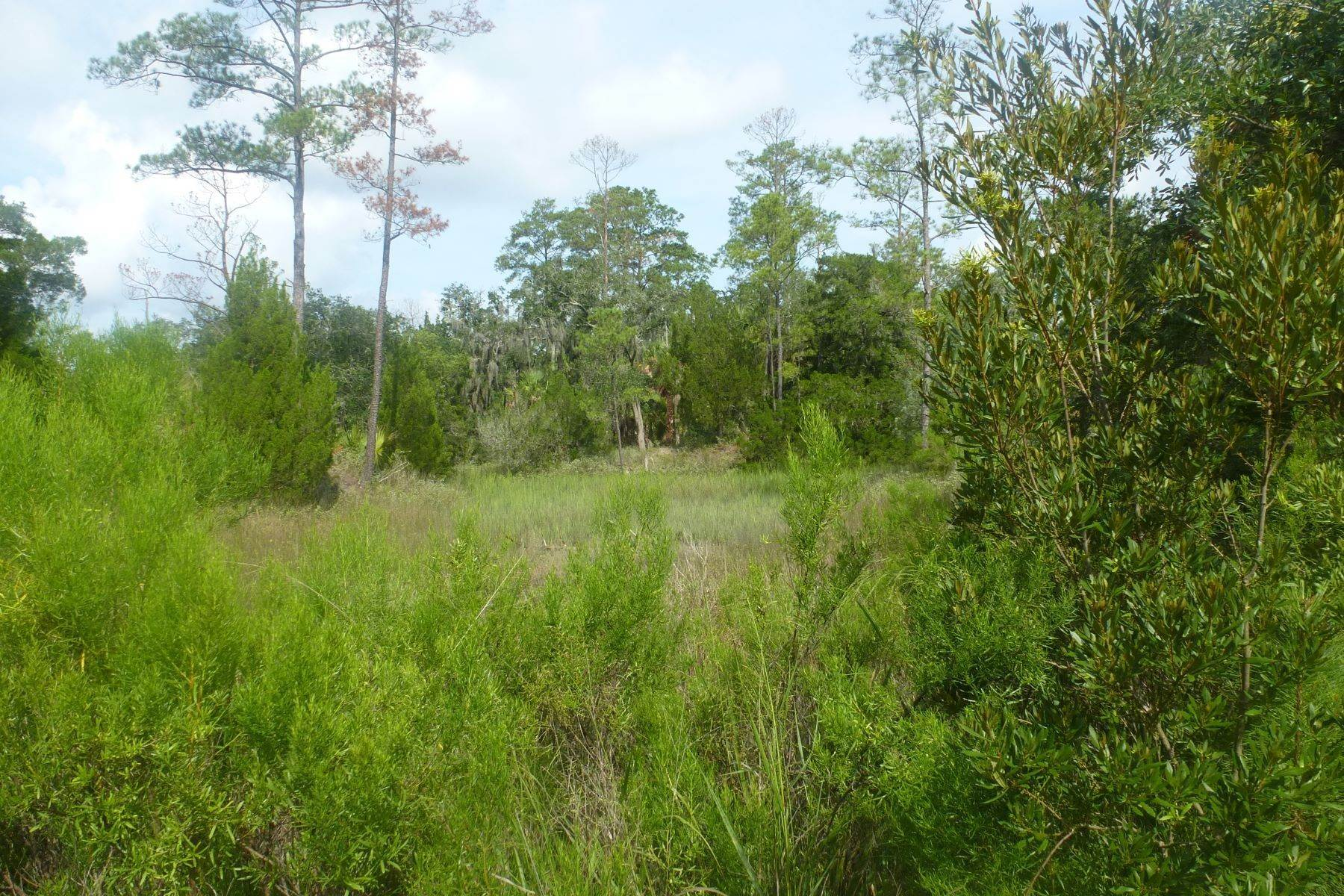 4. Land for Sale at Superior Lot with Eastern Marsh Views in Marsh Harbor on Whitemarsh Island 127 Marsh Harbor Drive Savannah, Georgia 31410 United States