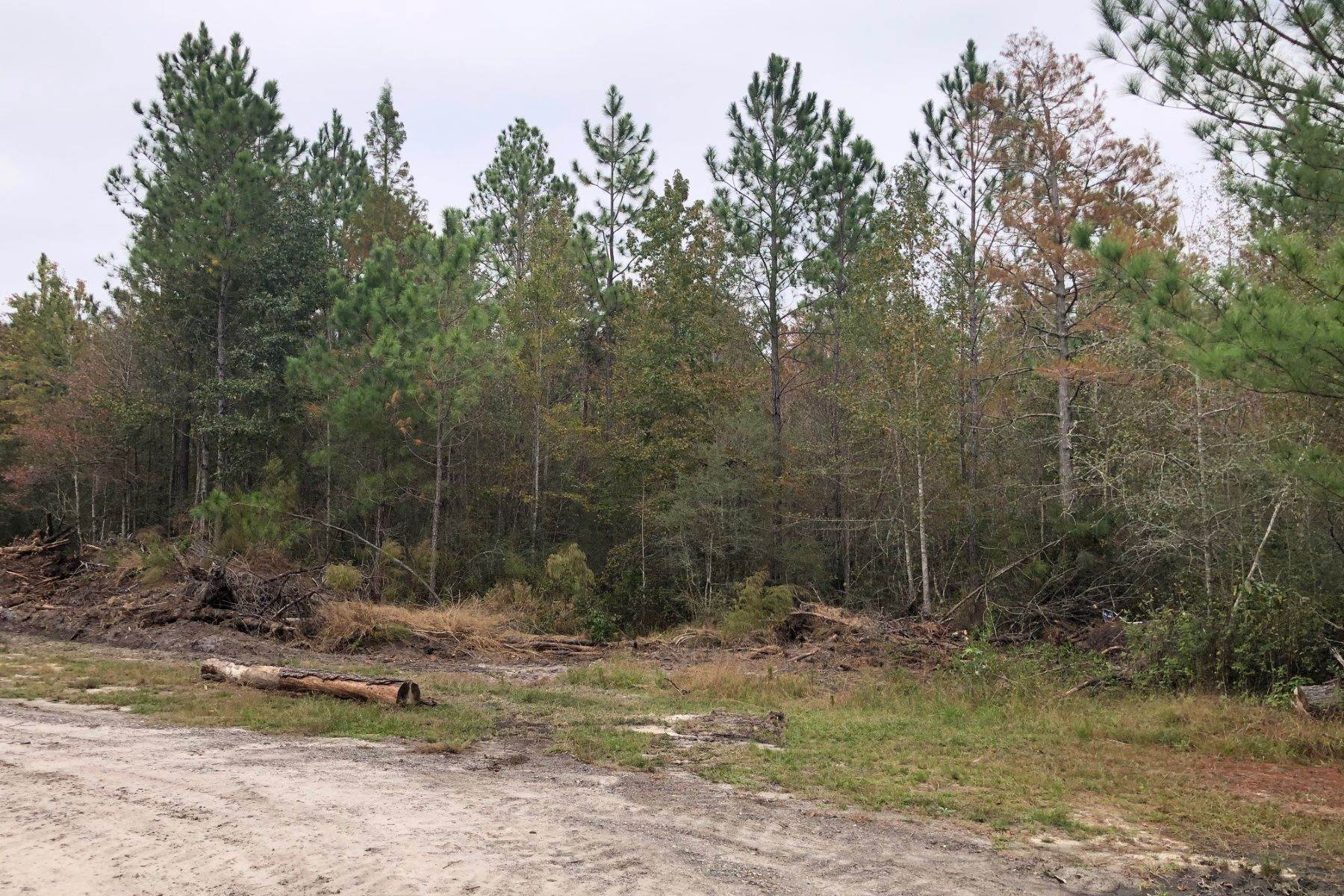 Land for Sale at 1081 Cohen Road Pineland, South Carolina 29934 United States