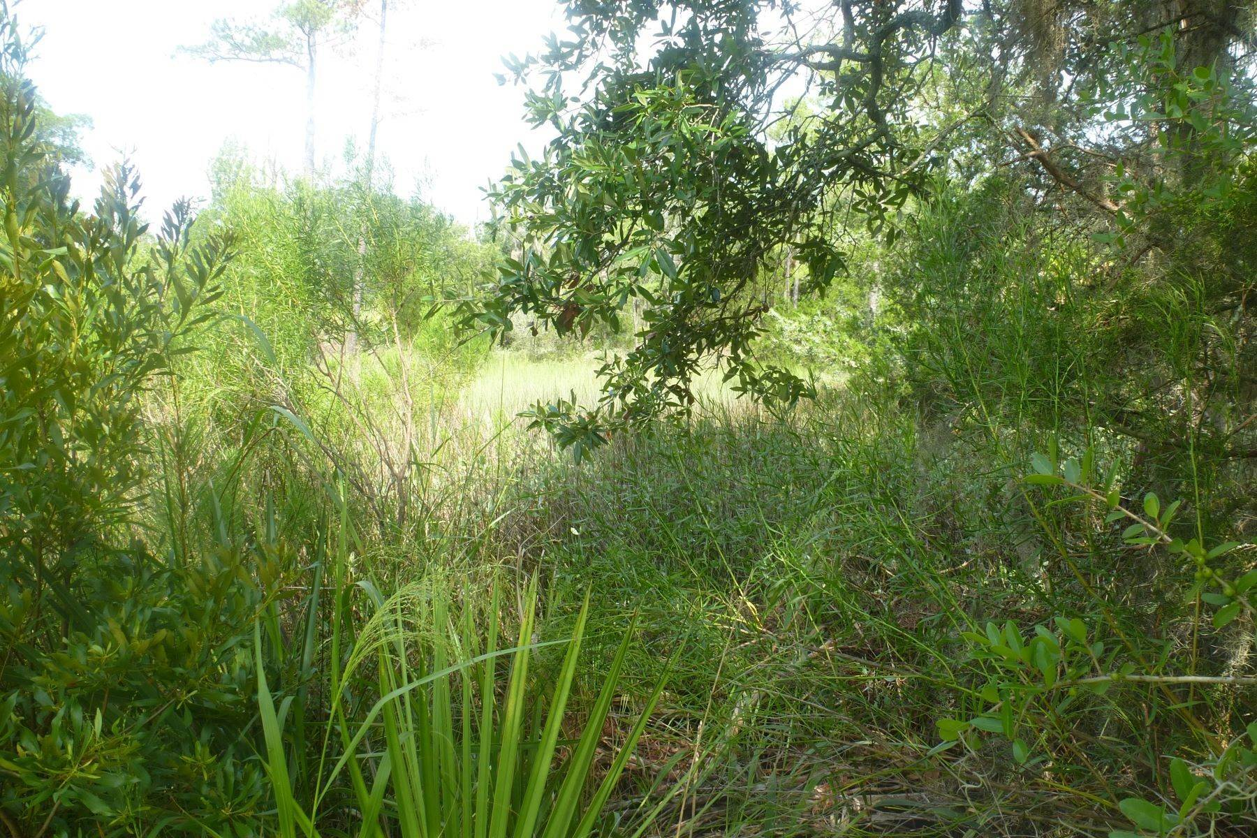 5. Land for Sale at Superior Lot with Eastern Marsh Views in Marsh Harbor on Whitemarsh Island 127 Marsh Harbor Drive Savannah, Georgia 31410 United States