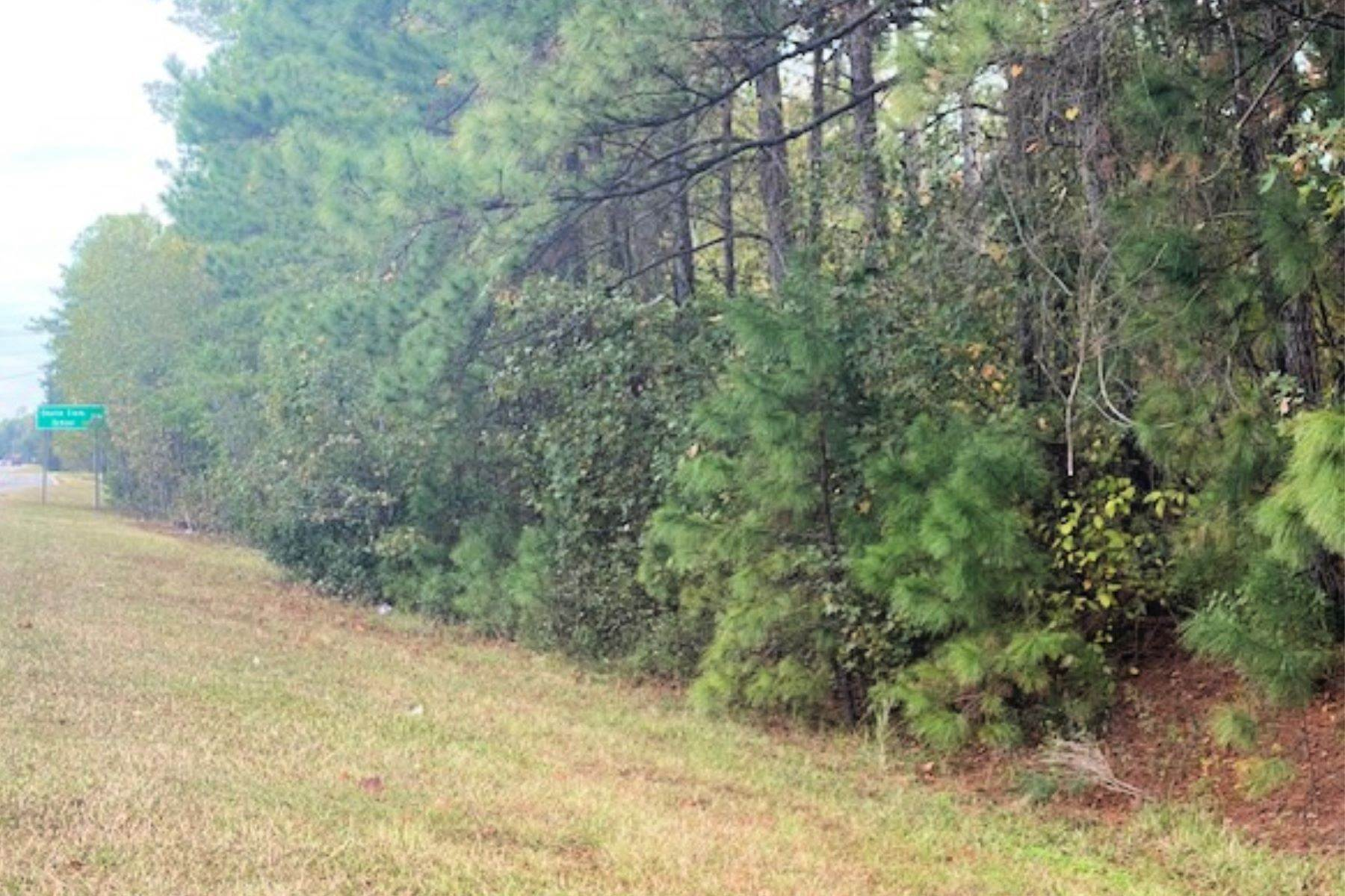 3. Land for Sale at 1691 Okatie Highway Okatie, South Carolina 29909 United States
