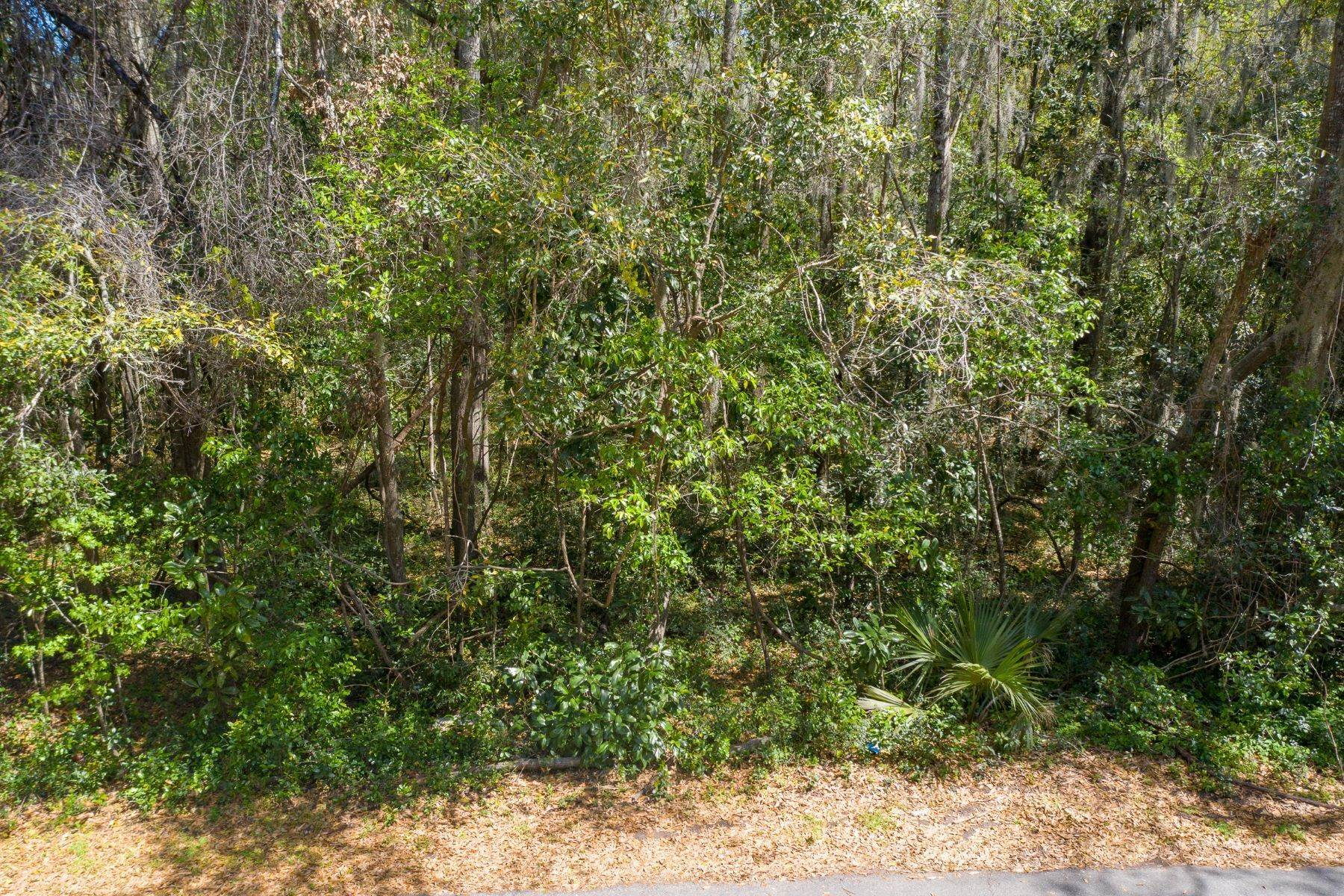 3. Land for Sale at 25 Maiden Lane Bluffton, South Carolina 29910 United States