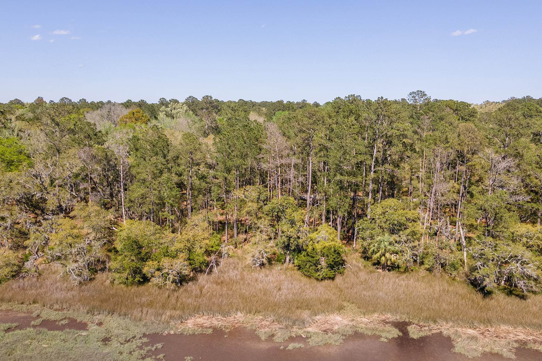 Land for Sale at 14 Sheldon Lane Seabrook, South Carolina 29940 United States