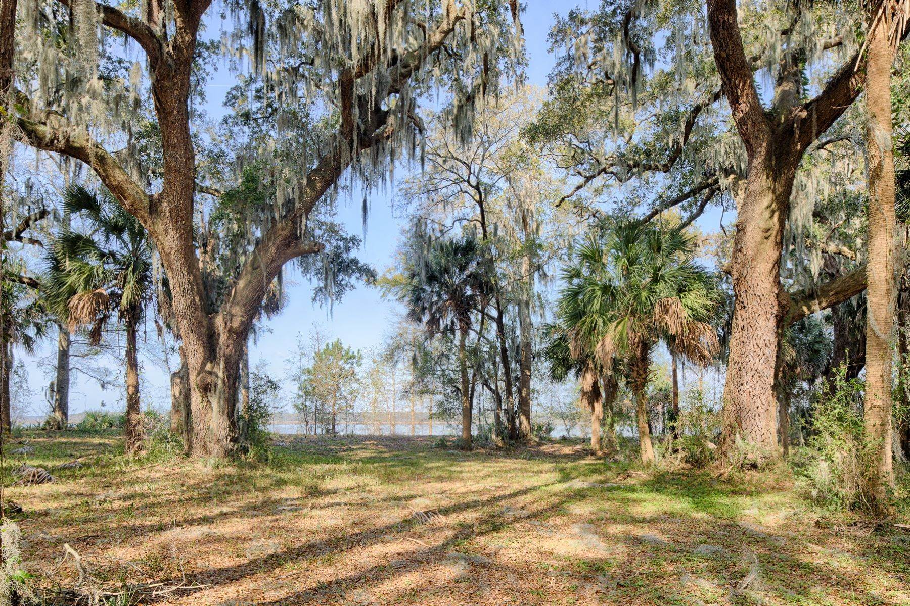 5. Land for Sale at 85 Oak Tree Road Bluffton, South Carolina 29910 United States
